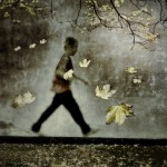 iPhoneography - autumn walk